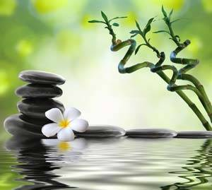 Reiki level 1 training in atlanta and ny with reiki master for Figuras para jardin zen