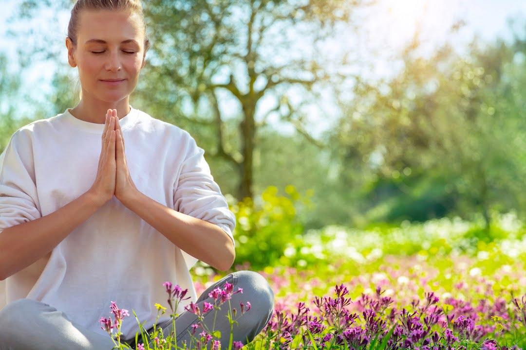 Restorative Meditation Retreat
